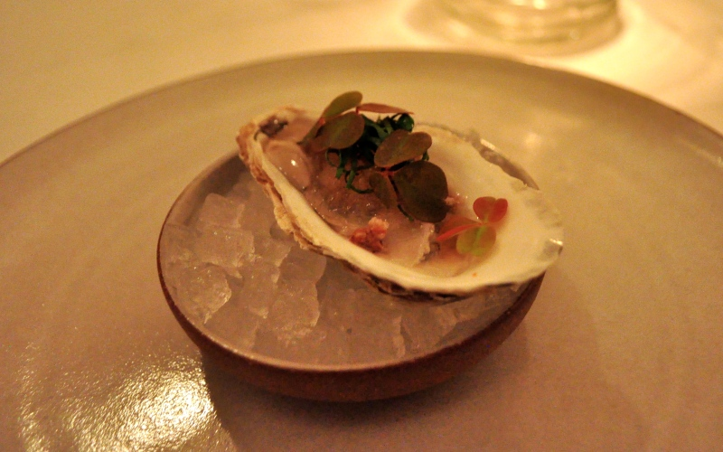 Oyster with Wood Sorrel, Buckwheat and Mignonette.
