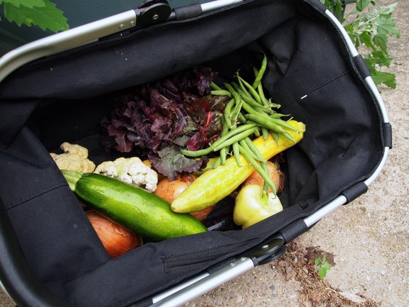 Veggie goodies from the Prairieland CSA pick-up.
